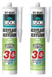 Bison Acrylaatkit Wit 30 Minuten -300ml/Koker